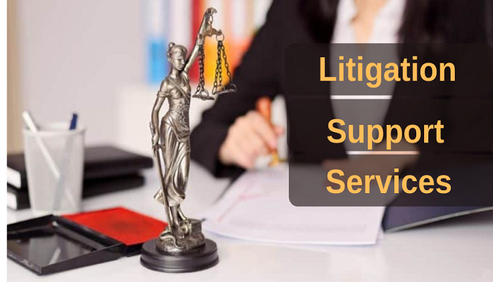 Litigation Support Service Companies