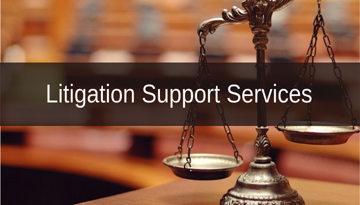 Litigation Support Service
