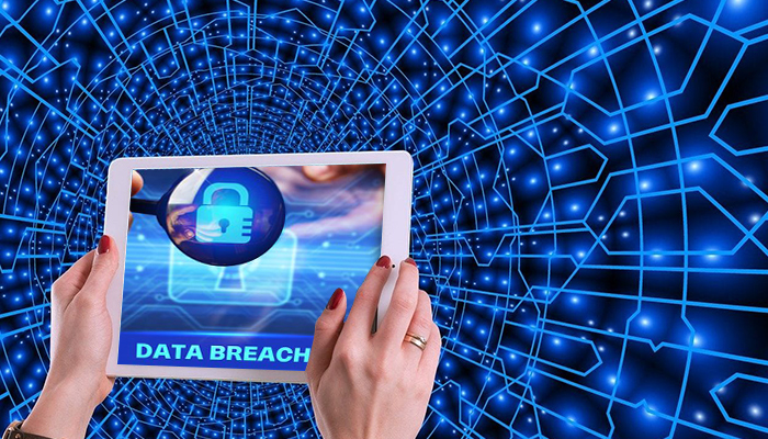 Data Breach Litigation Support