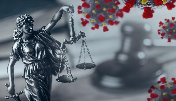 Litigation Services Company